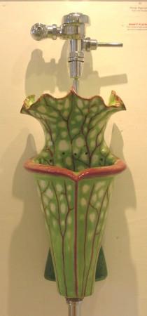 medium_pitcherplant.jpg