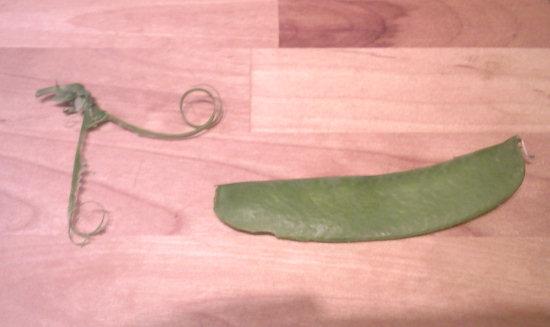un haricot et son fil
