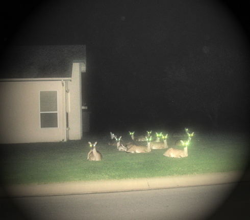 deers in the night, par partysweats