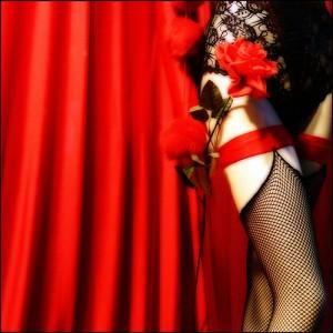 Une fleur qui ressemble à mon rouge idéal (Christine Lebrasseur)