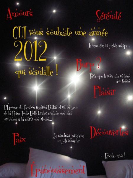 CUI vous souhaite une année 2012 qui scintille!