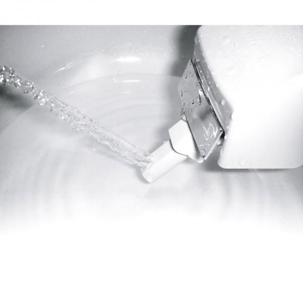 douchette japonaise pour toilettes (modèle en vente chez Leroy-Merlin)