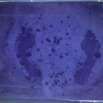 Tapis de bain bleu laissant apparaître l'empreinte humide de deux pieds