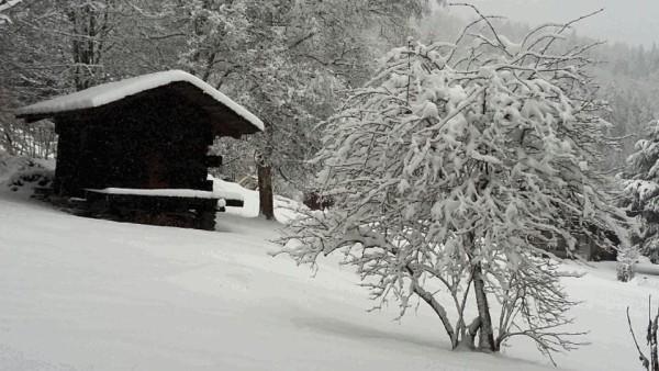 Un mazot savoyard sous la neige