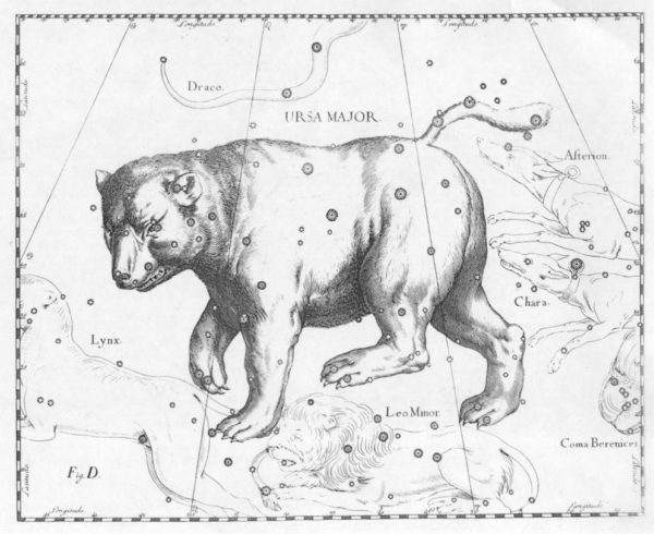 Constellation de la Grande Ourse (Hevelius)